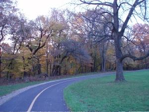 North Branch path
